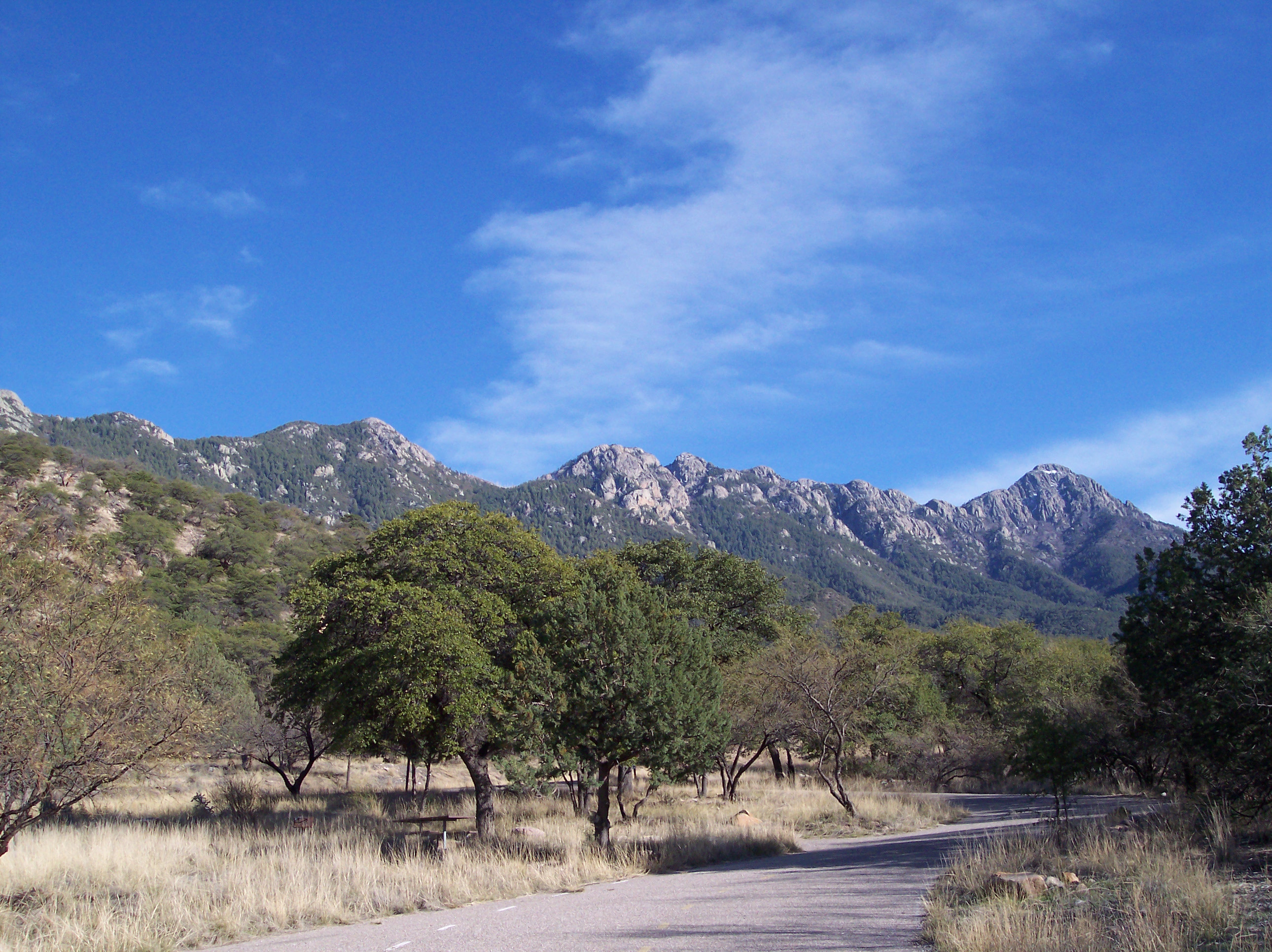 April 2017 Backpacking Trip in the Santa Rita Mountains ...